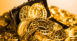 Bitcoin Treasure